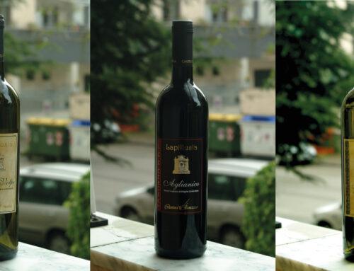 La prima vinificazione   The first vinification